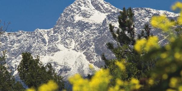 Der mächtige Berg ragt über Meran.