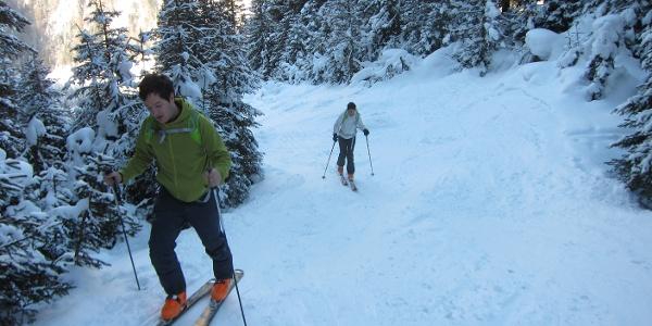Für den ersten Teil des Aufstiegs durch den dichten Waldgürtel nützt man die Schneisen des ehemaligen Skigebietes.