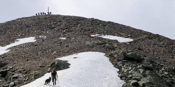 Die letzten Meter hinauf zur Gleckspitze im Ultental.