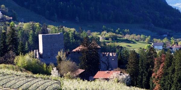 Burg Goyen bei Schenna mit auffälligem Bergfried.