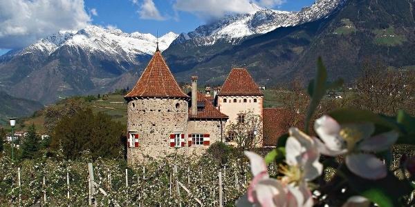 Schloss Planta in Obermais in Meran, malerisch gelegen vor traumhafter Kulisse.