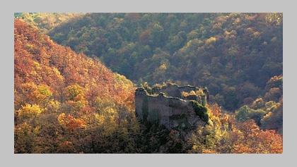 Blick auf Ruine Rauschenburg