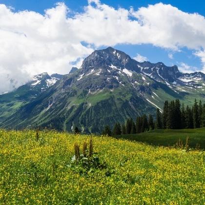 Wandern in Lech im Vorarlberg