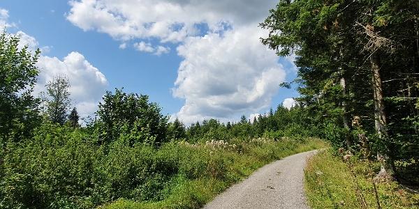 Biotopverbund-Runde Holzbronn - Weg Gültlingen-Holzbronn