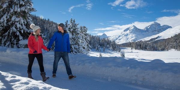 Winterwandern am Stazersee