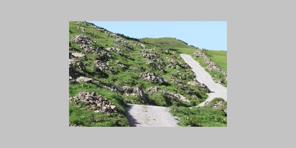 19 Steiniger Bühel