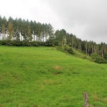 Islek-Landschaft