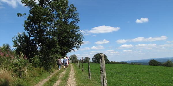 Wanderer bei Windhausen