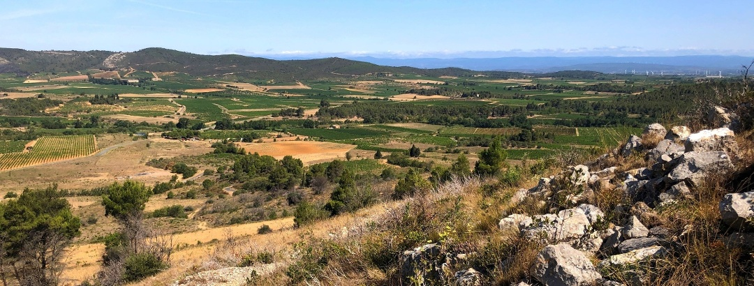 Panoramic view at Montséret in the Corbières