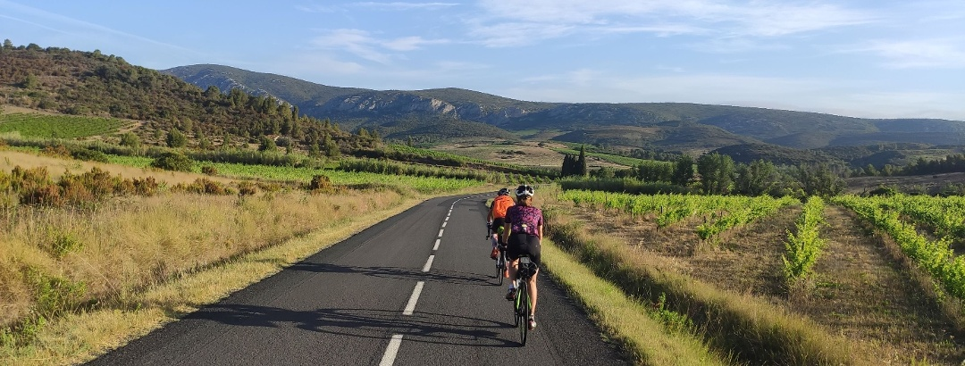 Cyclists on the roads of the Corbières