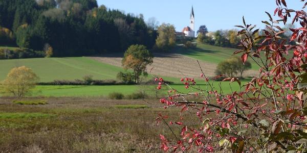Blick auf Kumreut (Pfarrkirche St. Josef)