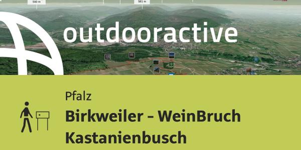 Themenweg in der Pfalz: Birkweiler - WeinBruch Kastanienbusch