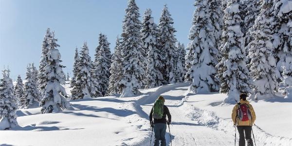 Skitouren La Val