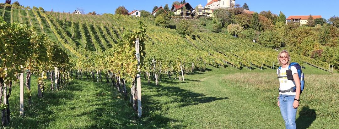 Zum Schluss steigt der Weg durch die Weingärten noch einmal steil an