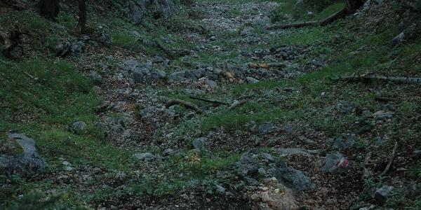 Steilstück im Anstieg zu den Vierkasern