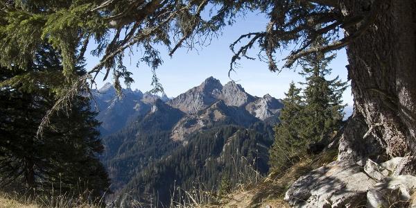 Beim Anstieg zum Hennenkopf zeigt sich immer wieder die markante Große Klammspitze.