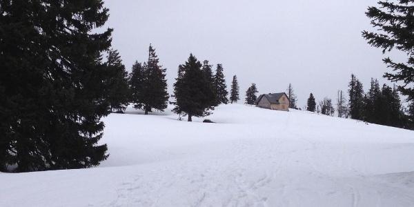 Die letzten Meter zur Hütte