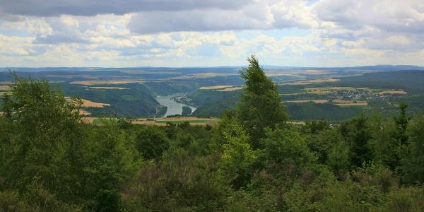 Blick über die Rheinhöhen