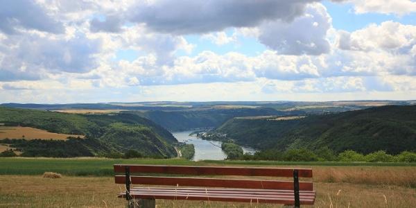 Blick von den Rheinhöhen