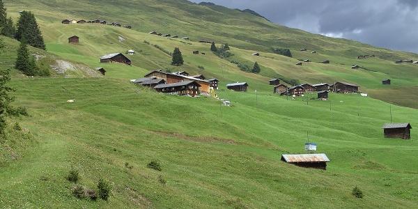 Etappe 4: Safien Camana mit Nüw Hus und Camaner Hütten