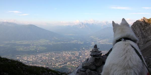 Blick von der Arzler Scharte auf Innsbruck