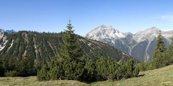 Panoramablick von der Rappenklammspitze bis zur Bayerkarspitze