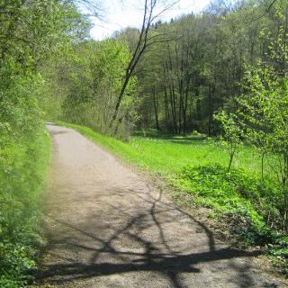 Baumbachtal im Frühling