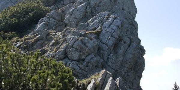 Der etwas anspruchsvollere Gipfelanstieg zur Käserwand