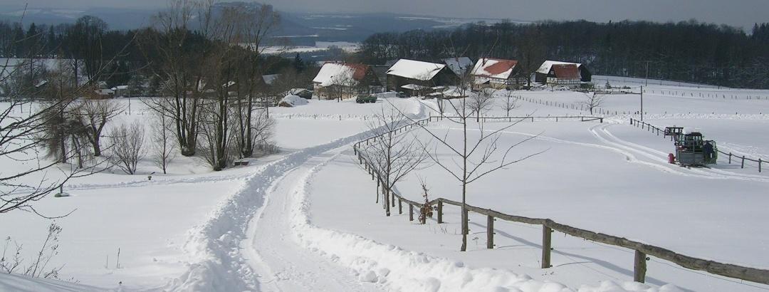Waitzdorf im Winter