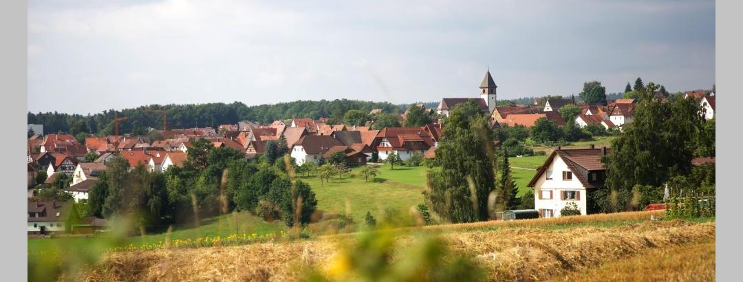 Sicht auf Calw-Altburg