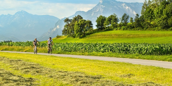 Heuernte bei Muntigl mit Untersberg im Hintergrund