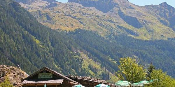Obere Gfölleralm, Untertal - links im Hintergrund die Hochwildstelle