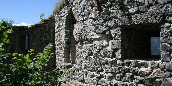 Burgruine Greifenstein
