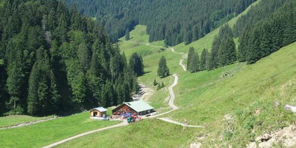 Alpe Zunkleiten nach Bolgen
