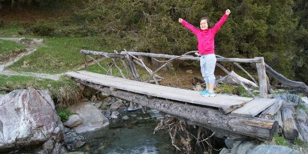 Brücke kurz vor der Madrisahütte im Valzifenztal