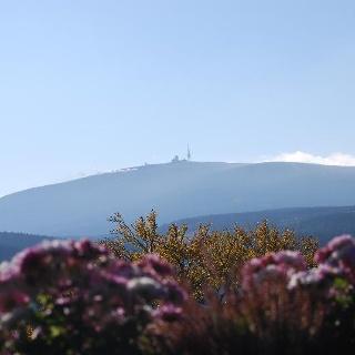 Blick zum Brocken (Foto: Bennet Doerge)