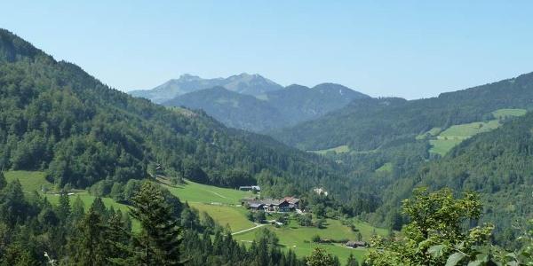 Rund um den Schwarzenberg - Auf dem Weg vom Hocheck Richtung Buchau