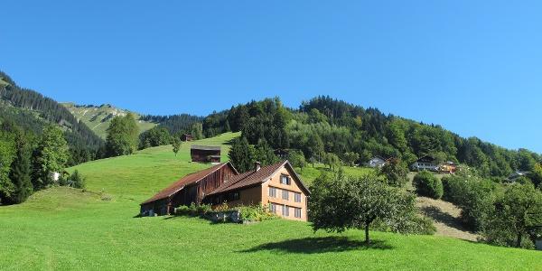 Altes Haus in Thüringerberg mit schön gepflegten Wiesen