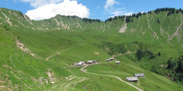 Die Alpe Sentum, eine typische Walser Alpsiedlung. Hier sieht man eindrücklich, wie das Gebiet bis hinauf zum Bergkamm entwaldet wurde. In der Folge entstanden Murenabgänge und im Winter Anrisszonen für Lawinen.