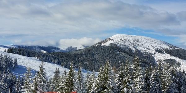 Blick auf den Rappold im Winter