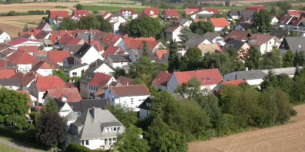 Blick bis zu den Rheinhessen-Höhen