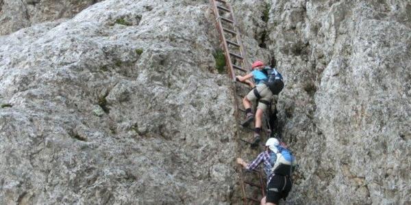 Die lange Leiter am Einstieg