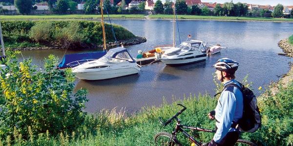 Elbe in Pirna