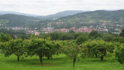 Witzenhausen
