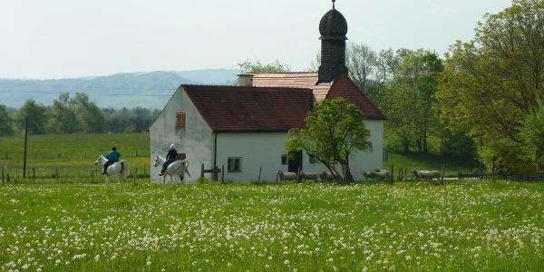 Fieberkircherl