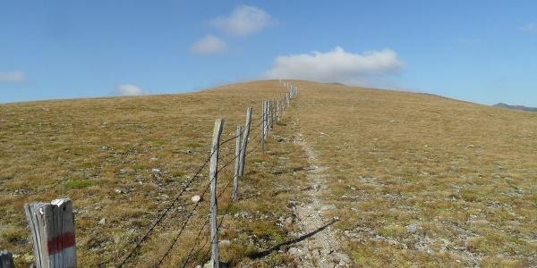 Auf der Kalteben verläuft der Weg oft entlang von Zäunen