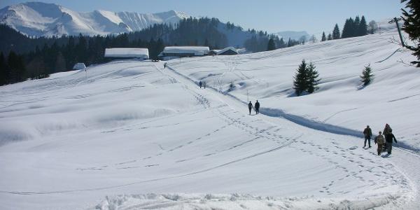 Hochälpele bei Schwarzenberg