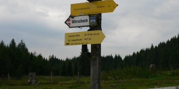 ... bis zum Wegweiser und von hier am Weg Nr. 281 zur Liezener Hütte über Lampoltenalm