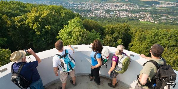 Ausblick vom Turm auf dem Neuenahrer Berg