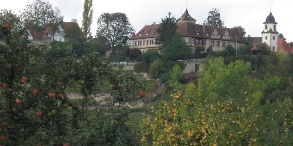 Schloss und Kirche Kleiningersheim